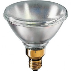philips-38075315-lampara-incandescente-1.jpg
