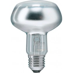 philips-8711500064011-lampara-incandescente-1.jpg